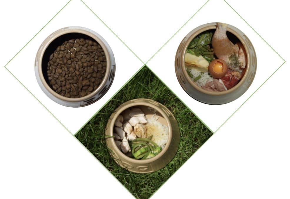 La diététique un petit mot pour une grande santé