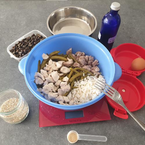 Nutrition animale suivi diététique préparation - Gamelle au poil